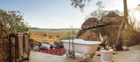 [Image: Madikwe-Hills-Private-Game-Lodge-.png]